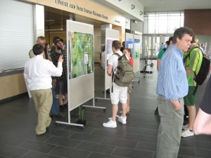 Undergraduate Research Posters